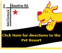 Wiggles and Wags Pet Resort Directions